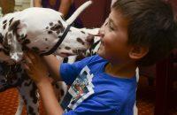 Német nyelvű kutyás foglalkozások a kora gyermekkorban